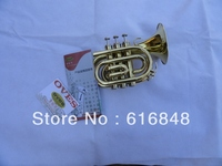 Factory Wholesale The Inventory With Bb Pocket Trumpet Appearance Golden Brown Horn 123mm