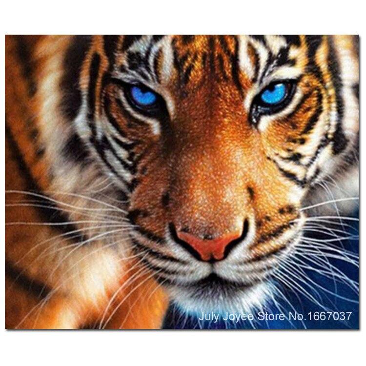 Animale ferocemente tigre occhi azzurri immagine del punto for Foto di decorazione della casa del cottage