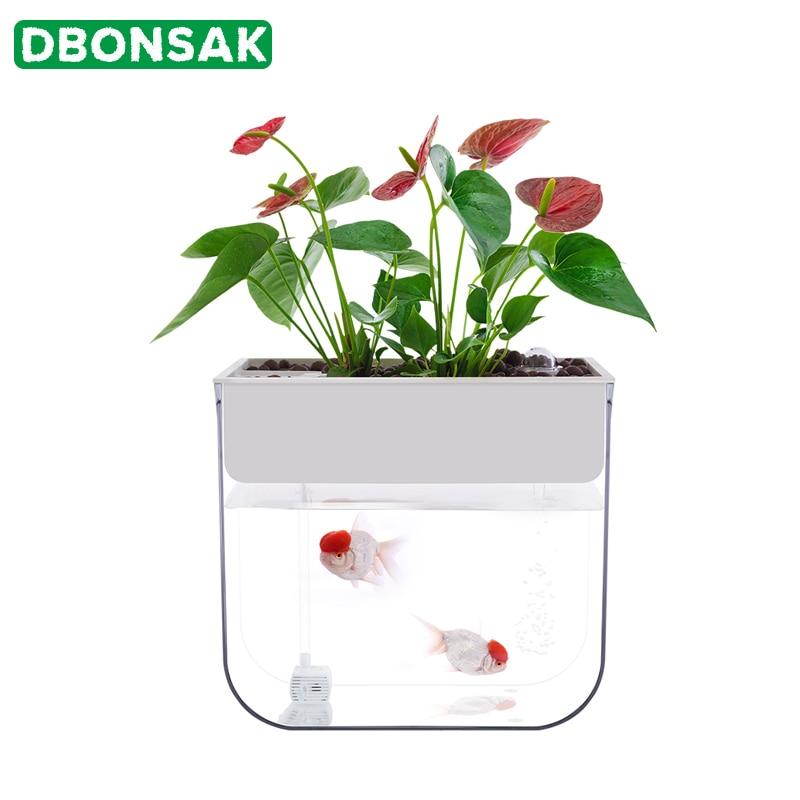 Plastique Pépinière pots colorés semis Raising Plante Fleur Home Récipient decor