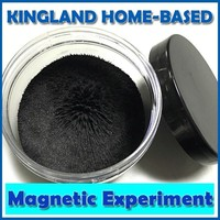 1 Box Iron Powder Magnets Model For Education Science Experiment For Teaching 100g Display Box