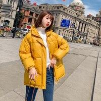 women outerwar padded jacket new 2019 winter long sleeved casual coats ladies loose hooded Korean Harajuku jackets