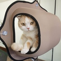 Hot Sale cat window bed cat lounger Warm Bed Pet Hammock For Pet Rest & Cat House Soft And Comfortable Cat Ferret Cage 2