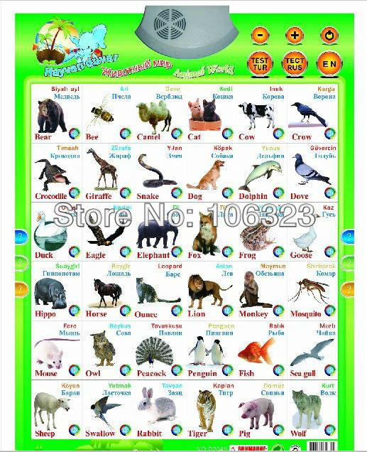 Russian English Turkish Learning Toys Kid Animal Machine Sound Wall Chart Audio Hanging Charts