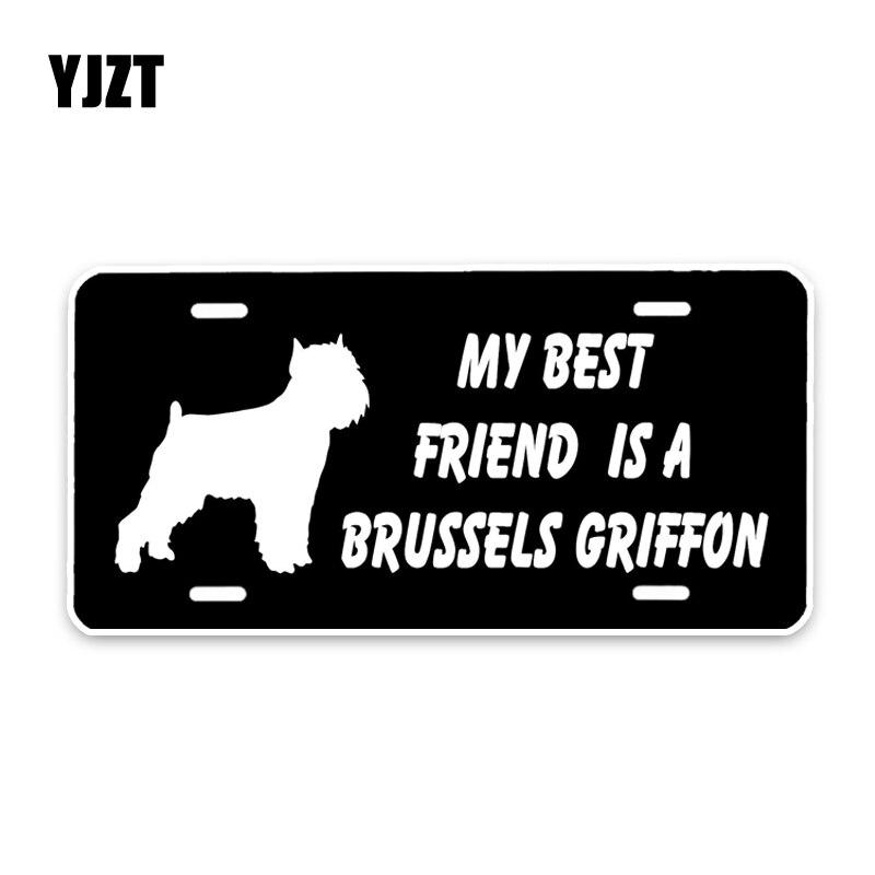 5/'/' or 6/'/' Havanese Dog Cartoon Car Bumper Sticker Decal 3/'/'
