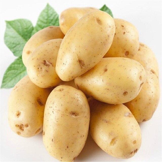 50 pz Patate bonsai Nutrizione semi di Ortaggi Verdi Per La Casa e Giardino di I