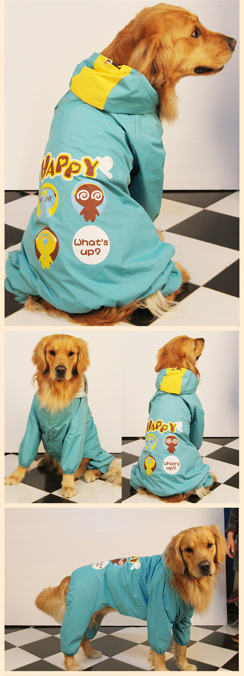 dog raincoat (12)