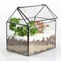 Bonsai Casa forma Geométrica Tabletop Terrário de Vidro Caixa do Plantador de Vaso de Flores Suculentas Moss Fern Planta Bonsai Vaso de Flores