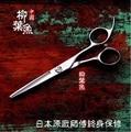 Enviado rápidamente! alta calidad profesional tijeras del pelo 5.5 / 6 / 6.5 pulgadas japón 440C peluquería peluquería tijeras de corte tijeras