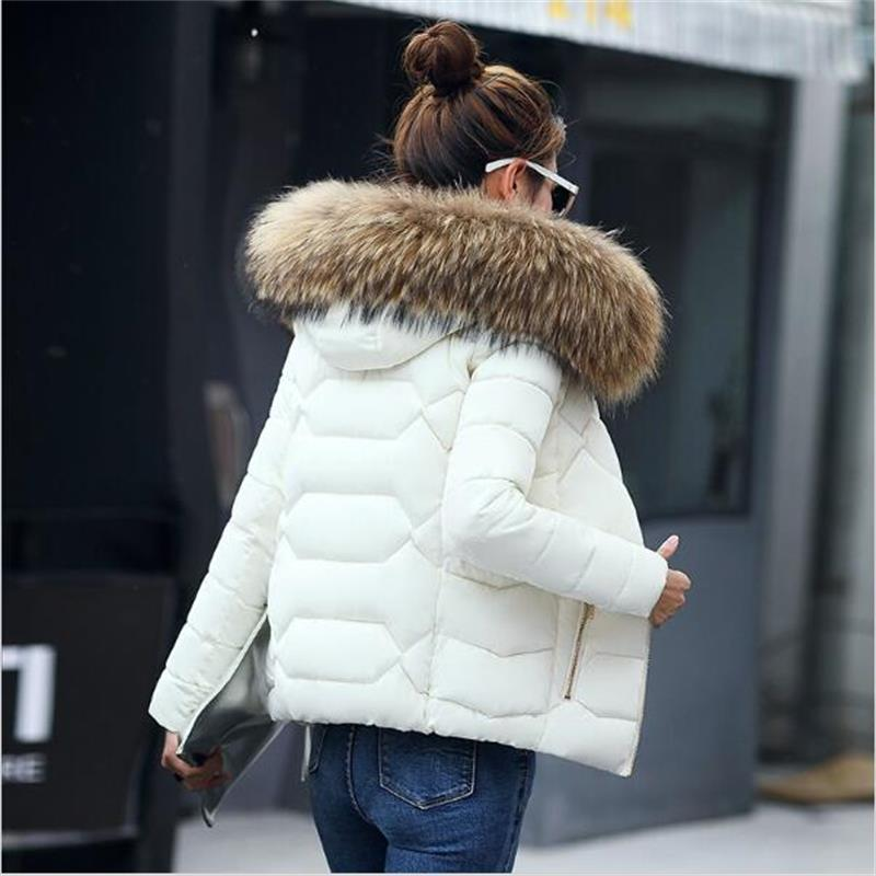SMFOLW 2017 New winter jacket women Fake fur collar down wadded jacket female cotton padded jackets