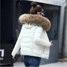 SMFOLW 2017 New winter jacket women Fake fur collar down wadded jacket female cotton-padded jackets thickening women winter coat