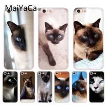 MaiYaCa для iphone 7 6 X Чехол для домашних животных сиамский Кот Прозрачный чехол для iphone 8 7 6 6S Plus X 10 5 5S SE 5C XS XR мобильный чехол