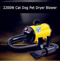 Y198 Portble 2200w Cat Dog Pet Dryer Blower 220v For Dogs Cats Orange Pink Dog Hair Dryer With 3 Nozzles