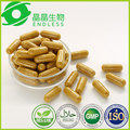 5 lotes 60 caps/lot 500 mg 100% Natural Extrato de Curcuma Curcumina Cápsulas