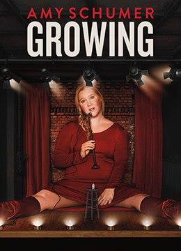 《艾米·舒默:长大当妈》2019年美国喜剧电影在线观看