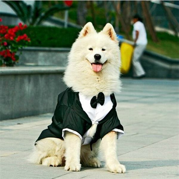 Big Dog Clothes Large Dog Wedding Suit Tuxedo Garment Clothes For Bulldogs Dog Formal Party Suit Coat Jacket Costume Apparel