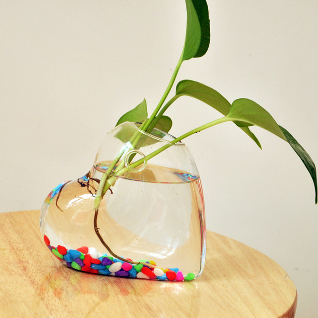 Heart Shaped Hanging Glass Vase Hanging Vase Wall Hanging Plant