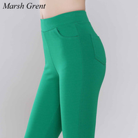 2017 Spring Summer Autumn Women Elastic Waist Pants Work Wear Pants Elegant Pencil Pants Women Trousers