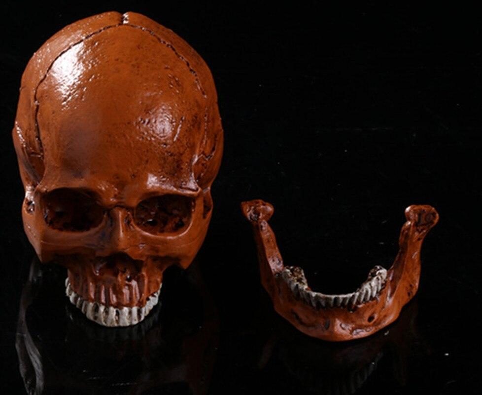 Simulación de juguetes de Halloween cráneo humano calavera de resina terrorista cráneos fantasma cráneo cabezas de huesos cruzados calavera
