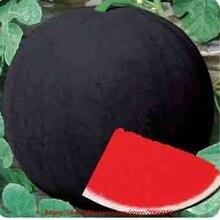 Buy 30 watermelon seeds black skin Early Watermelon  online