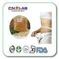 100% Naturales CLA/Ácido Linoleico Conjugado softgel 1000 mg * 500 unids cápsula de pérdida de peso