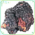 200 г Кордицепс sinensis экстракт Hericium erinaceus экстракт Чаги экстракт, экстракт гриба