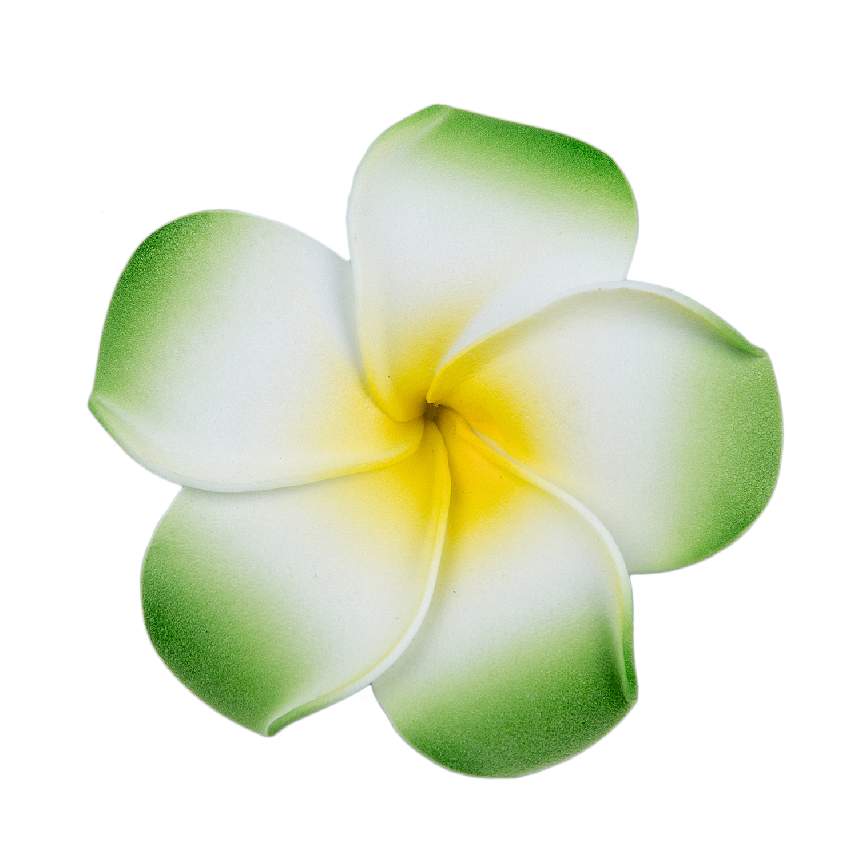 SAF-Barrette hair clip with foam frangipani for girls women - Green