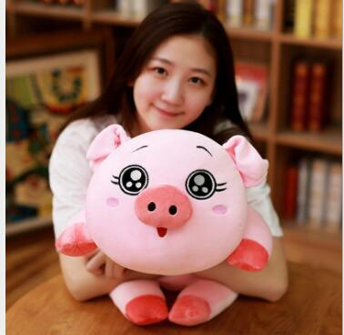 WYZHY New Year Gift Spring Festival Pig Mascot Detachable Angel Soft Plush Toy 60CM