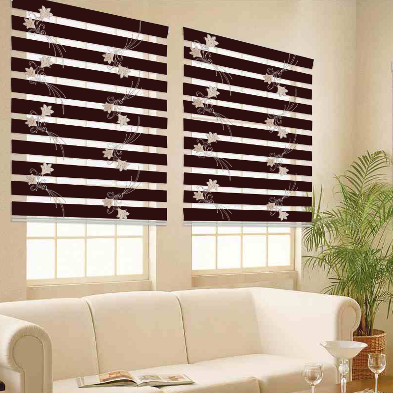 Free Shipping Popular Zebra Blinds And Roll Up Window