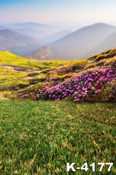 Outdoor font b Photo b font Background 150x200cm Photography Props Blanket Purple Flowers Hazy Mountains Fantasy