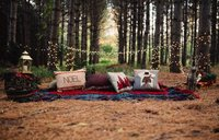 Cozy Outdoor Christmas woodland forest camping light Themed backdrops Computer print children kids background