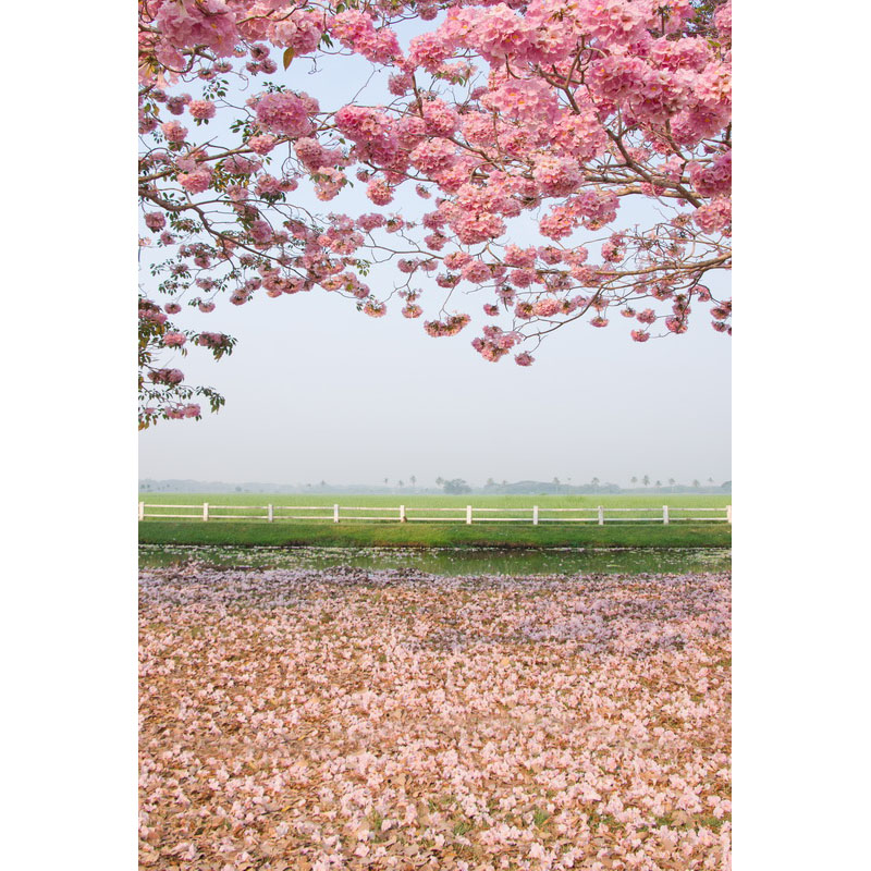 Seamless Vinyl Photography Backdrop Pink Sakura Flower Tree Wild Computer Printed Nature Backgrounds for Photo Studio F-3168 photo vinyl backdrop top promotion studio photography backgrounds 6 5ftx10ft 2x3m computer paint foldable free shipping