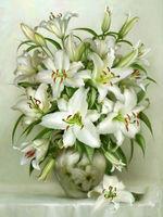 5D DIY Diamond Painting Cross Stitch Lily Pattern Diamond Embroidery White Flowers Icon Room Decoration Diamond
