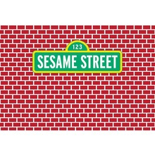 MEHOFOTO Background Dark Red Bricks Wall Sesame Street Custom Photo Children Backdrop Photocall Studio G
