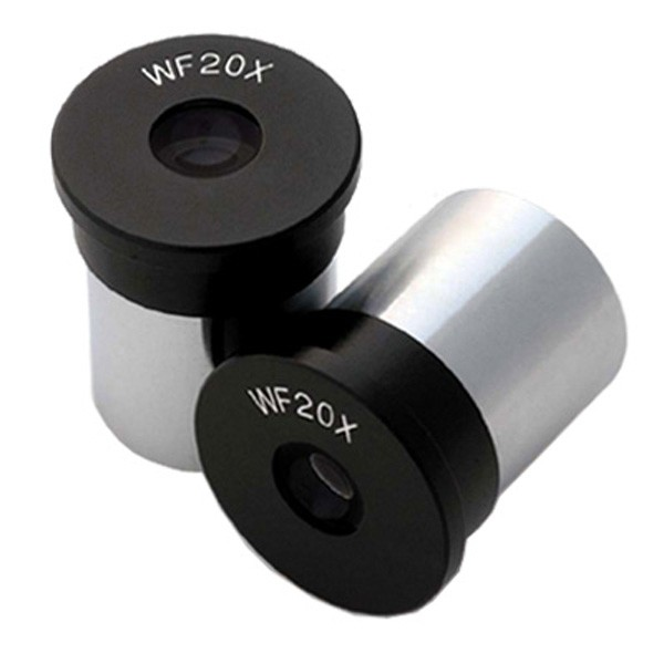 Saudi Arabia+United Arab Emirates--AmScope Pair of WF20X Microscope Eyepieces (23mm)Saudi Arabia+United Arab Emirates--AmScope Pair of WF20X Microscope Eyepieces (23mm)