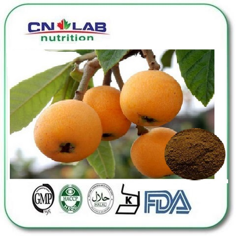 High quality Factory supply of the Loquat Extract powder 1000g for sale manufacturers to supply high quality 100g wild chrysanthemum extract 30 1