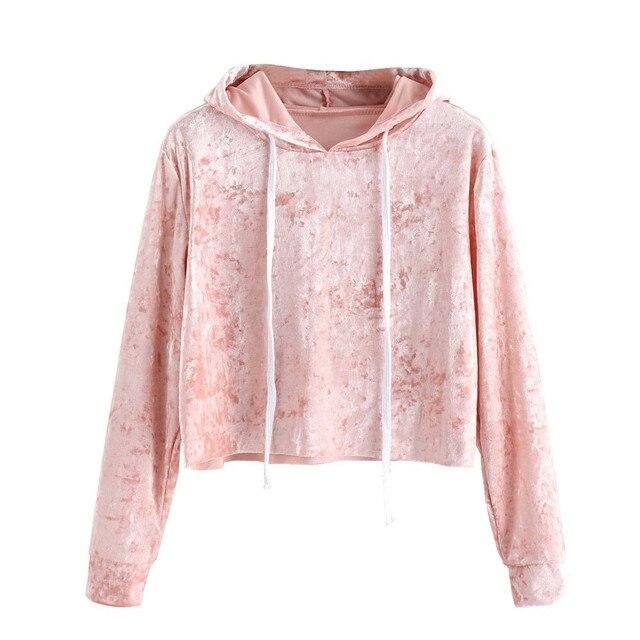 413ccea14 Autumn Winter Women Sweatshirt Pink Velvet Hoodies Long Sleeve Cropped  Hoodie Sweatshirt Jumper Pullover Female 30
