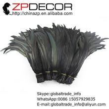ZPDECOR Wholease100 pcs Black Coque Rooster Tail Feathers For Feather Costumes Decoration