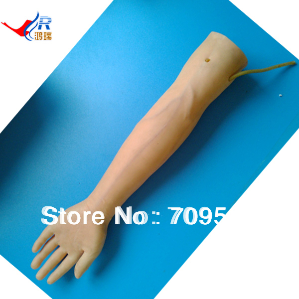 ISO Vivid Skin and Veins of IV Arm Model, Injection Training Arm Model vivid anatomical skin block model enlarged skin section model human skin model