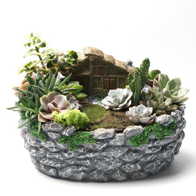 Preferred Meshpot Succulents Pots Resin Flower Pots Planter Container/Box  DU82