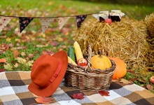 Laeacco Farm Haystack Hat Basket Pumpkin Corn Fruits Photography Background Customized Photographic Backdrop For Photo Studio biochemical importance of pumpkin fruits