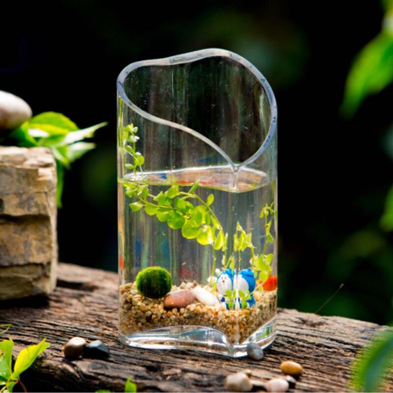 Modern Creative Glass Vase Fish Tank Heart Shaped Hydroponic