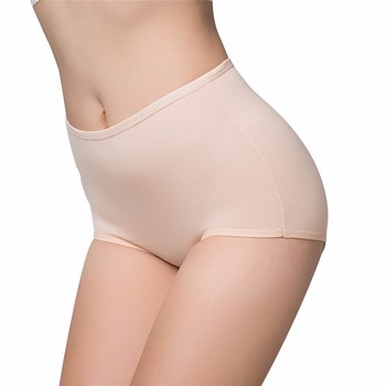 Women's Panties  Ma'am High Waist Triangle Underpants 1