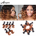 Amapro Hair Products 6pcs 10inch Short Hair Brazilian Two Color Tone Ombre Hair Body Wave Color Style in Different Ways