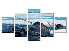 5 pieces / set Sea Life Narwhal canvas painting wall art poster print Pictures Living room home Decor wall hanging(China)
