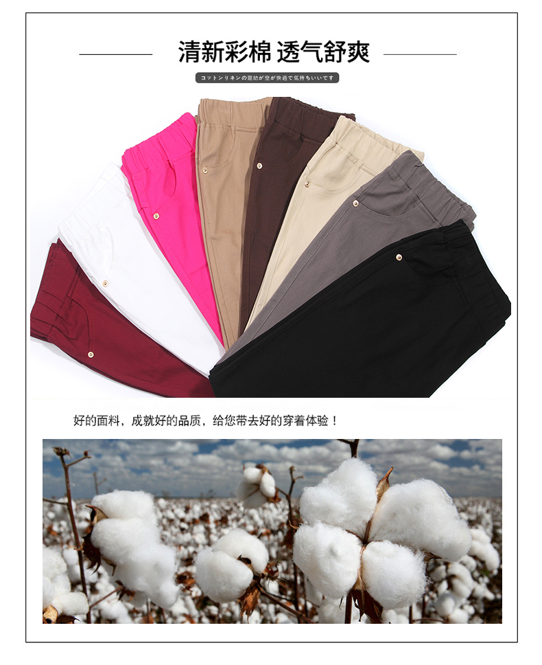 Women Casual Pants Plain Color Basic Trousers Spring Autumn Pantalones Mujer High Elastic Band Waist Pant Red White Gray Black (4)