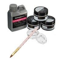 Nail Beauty Art Kit Acrylic Liquid Crystal Dappen Powder Brush Pen Dish DIY Set Free Shipping