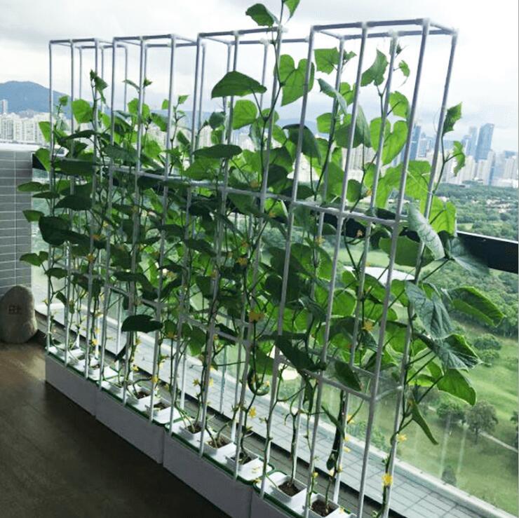 Di alta Qualità Balcone coperto sistema di Coltura Idroponica NFT cultura dell'acqua di coltivazione fuori suolo organico piantine di ortaggi box