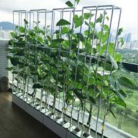 High Quality Balcony indoor Hydroponics system NFT water culture soilless cultivation organic vegetable planting box