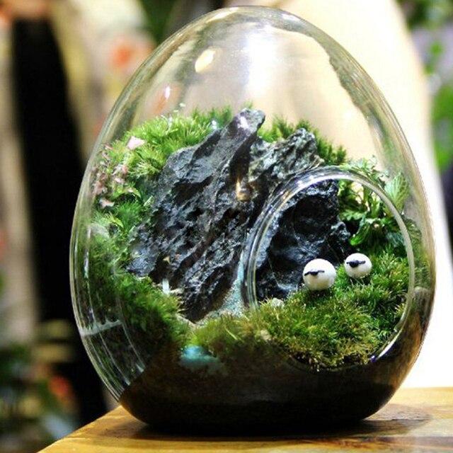 Acheter oeuf terrarium mignon verre pots - Plante dans pot en verre ...