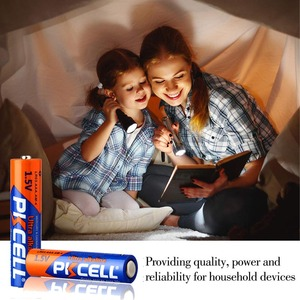Image 5 - 40 Uds PKCELL AAA pilas de 1,5 V LR03 Batería alcalina E92 AM4 MN2400 3A batería de único uso para cepillos de dientes electrónico thermogun